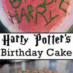 harry potter hagrid cake